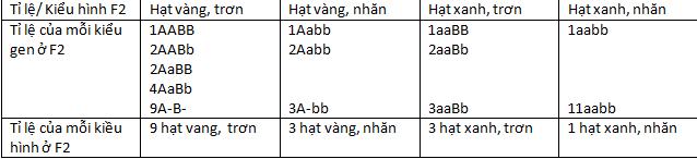 Bài 4: Lai hai cặp tính trạng