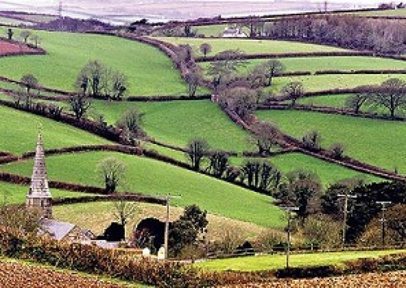 A trip to the countryside: Language Focus
