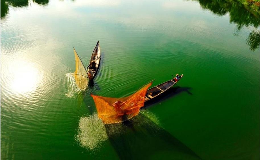 Anh (chị) hãy cho biết trong bài kí Ai đặt tên cho dòng sông ? của nhà văn Hoàng Phủ Ngọc Tường, sông Hương khi chảy vào thành phố có nét đặc trưng gì?