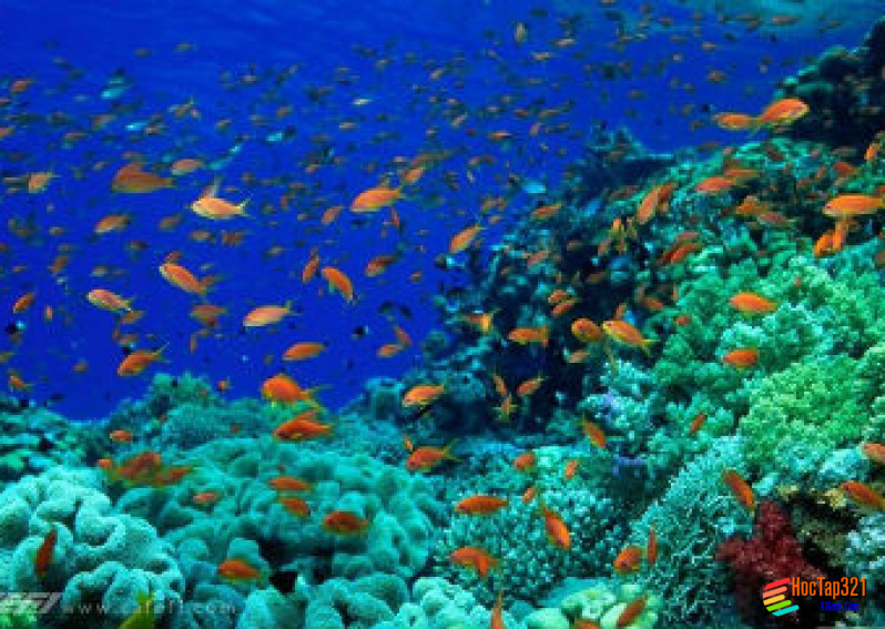 Bài 16: Nước biển và đại dương