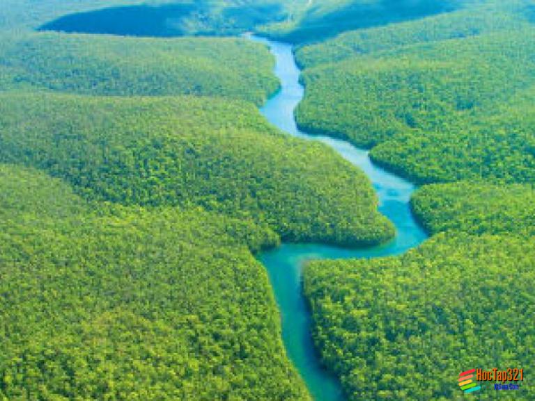 Bài 18: Thực hành nhận biết đặc điểm môi trường đới ôn hòa