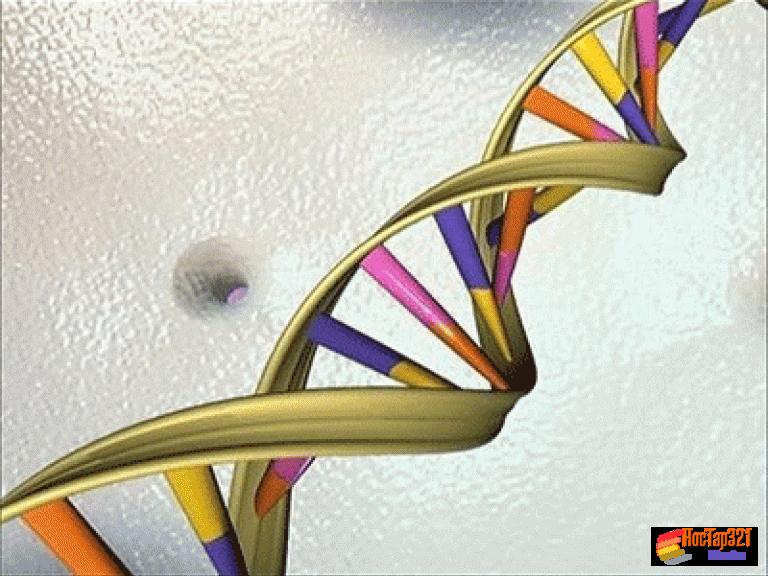 Bài 19: Mối quan hệ giữa gen và tính trạng