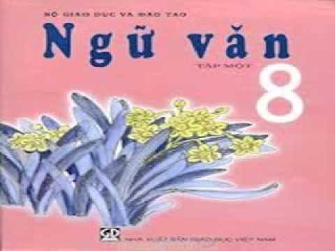 Bài 32 – Tiết 1 : Soạn bài Ôn tập và kiểm tra phần tiếng Việt (Tiếp theo) – Hướng dẫn làm bài tập SGK Ngữ văn Lớp 8, Tập 2