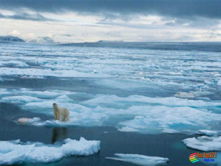Bài 47: Châu Nam Cực - châu lục lạnh nhất thế giới