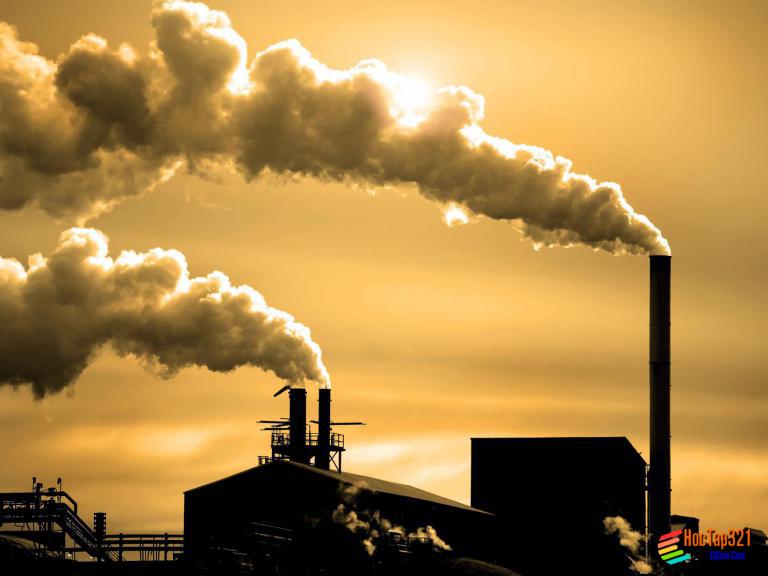 Bài 55: Ô nhiễm môi trường ( tiếp theo )
