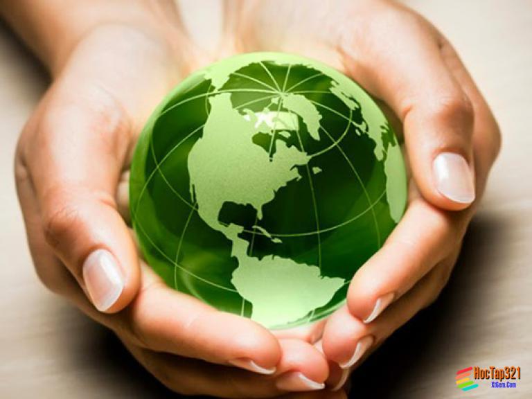 Bài 61: Luật bảo vệ môi trường