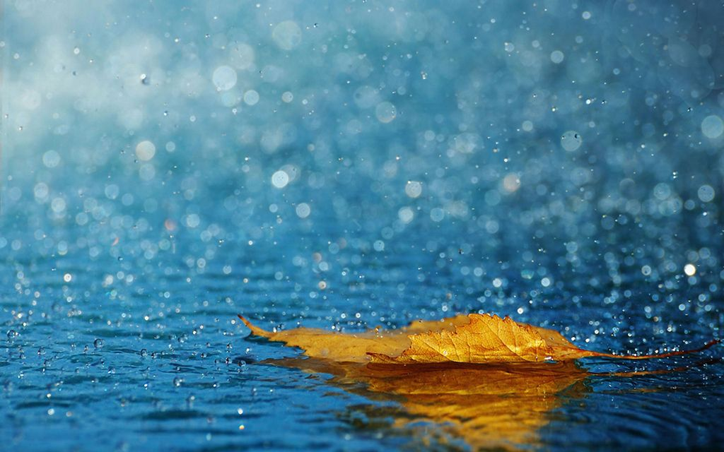 """Phân tích bài thơ """"Nghe mưa"""" (Thính vũ) của ức Trai."""