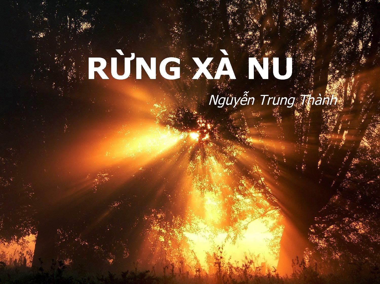 Phân tích hình tượng cây xà nu trong truyện ngắn rừng xa nu của nhà văn Nguyễn Trung Thành