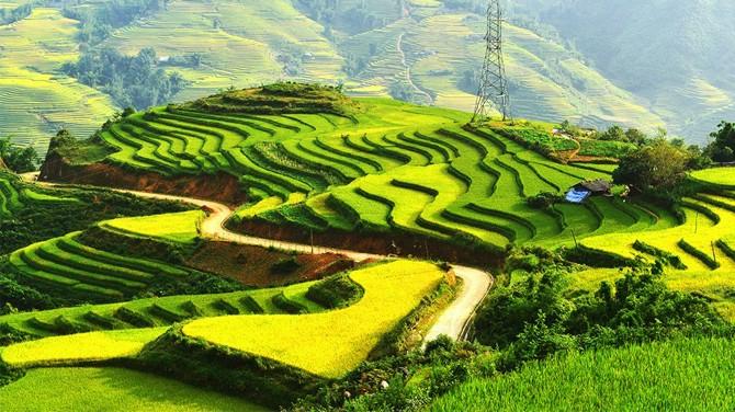 """Phân tích tư tưởng """"đất nước của nhân dân """" đã được thể hiện trong đoạn thơ """" Đất Nước """" – trích (Mặt đường khát vọng) của Nguyễn Khoa Điềm."""