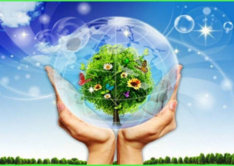 Unit 7 Saving Energy: Listen